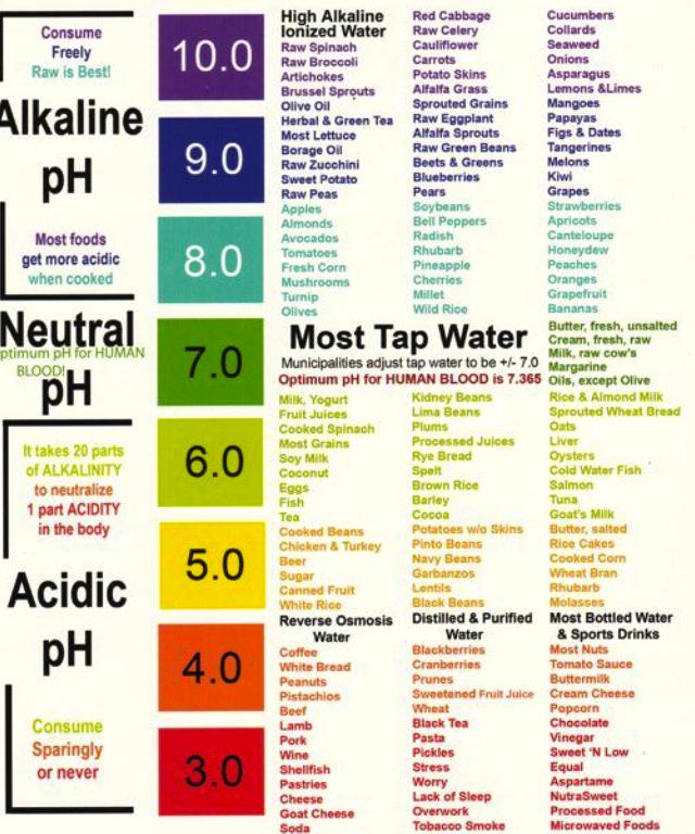 La bufala della dieta alcalina scienza in cucina blog le scienze - Tabla de alimentos alcalinos y acidos ...